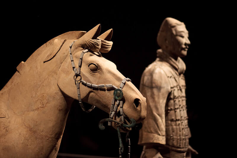 Terra Cotta Warriors – Houston Museum of Natural Science