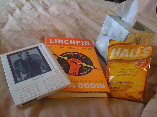 Linchpin, the Kindle, and Necessities