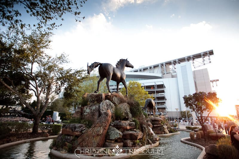 Horse statue outside of Reliant Stadium