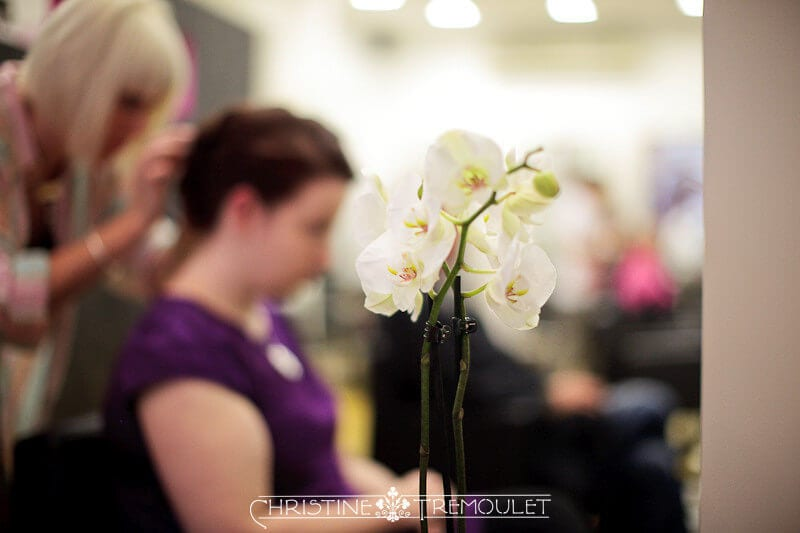 Orchids for Ann and her wedding hair - Bristol, UK