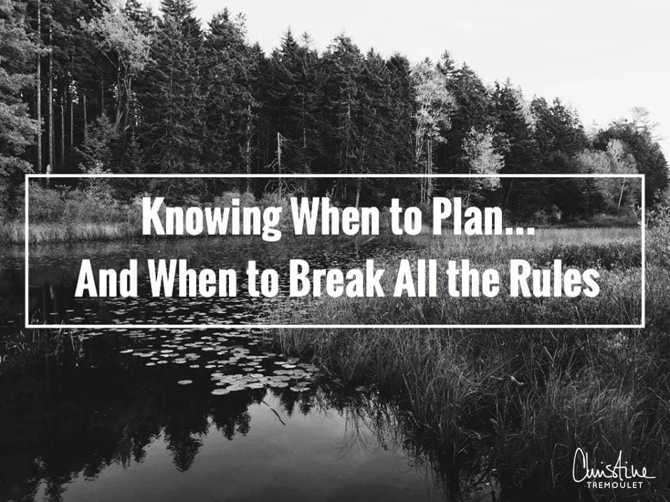 Knowing when to plan, and when to break all the rules. It is actually a choice YOU get to make for yourself and your blog!