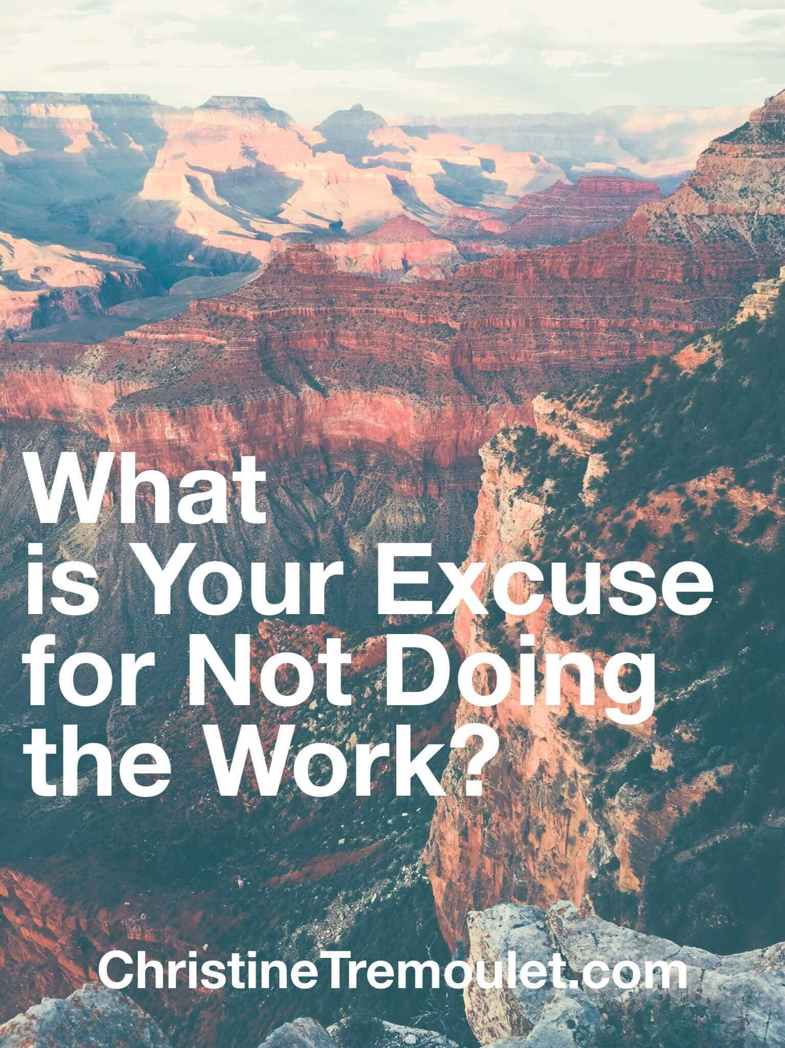 What is Your Excuse for Not Doing the Work?